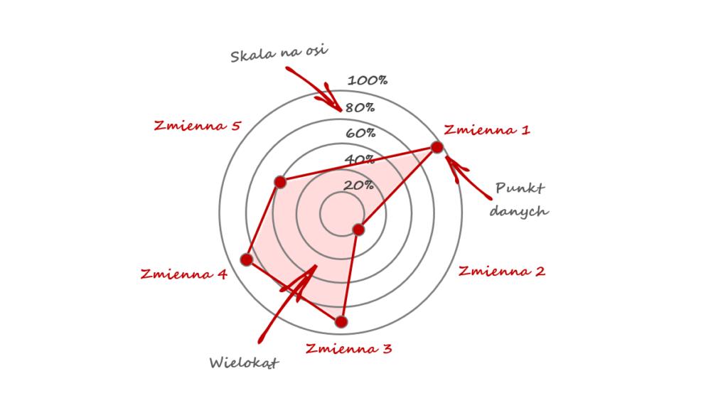 wykres radarowy - anatomia