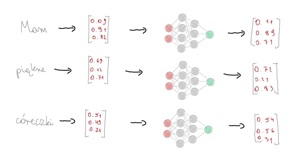 transformer sieć neuronowa feed forward neutral network mlp
